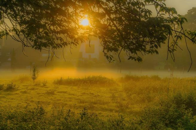 sunrise-2697692_1920